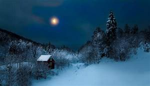 Winter Night Full HD Wallpaper and Background | 1920x1098 ...