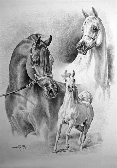 mooie schaduwen les  kunstvakken    paard