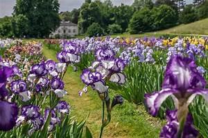 Welche Blumen Blühen Im August : bl tenzauber schweiz tourismus ~ Orissabook.com Haus und Dekorationen