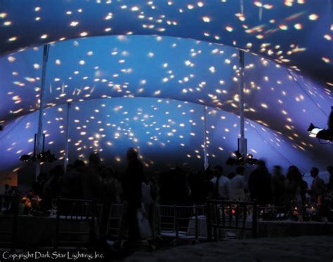 20 best images about star ceilings starry night event