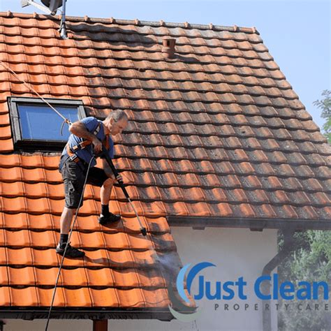 signs   roof  cleaning roof moss removal st