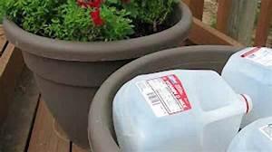 Grand Pot De Fleur Plastique : l 39 astuce toute simple pour conomiser du terreau dans vos ~ Premium-room.com Idées de Décoration