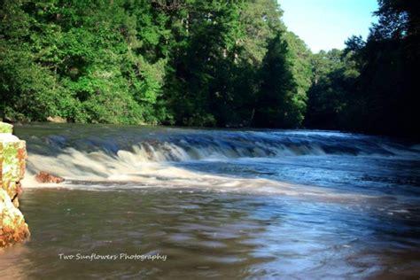 beautiful swimming hole  louisiana kisatchie bayou