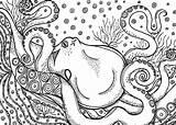 Octopus sketch template