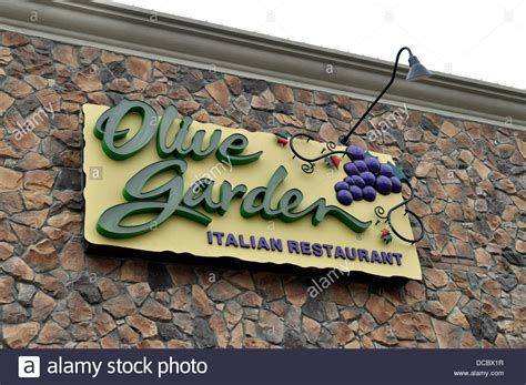 darden dish olive garden darden dish olive garden sign in garden ftempo