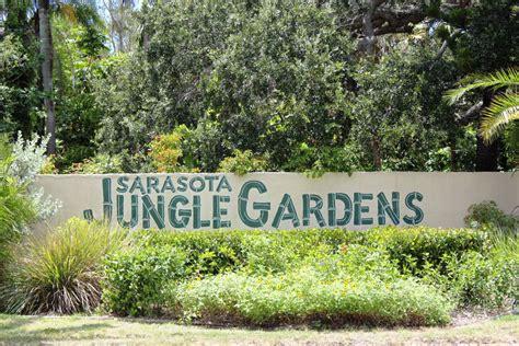 Jungle Gardens Sarasota by Sarasota Jungle Gardens The Areas Only Zoological Garden