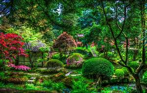 Manual, Resize, Of, Wallpaper, Trees, Flowers, Pond, Park, Hdr, Japan, House, The, Bushes