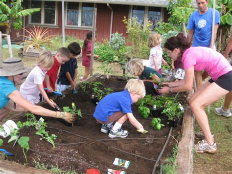 teach  child gardening    grow helping