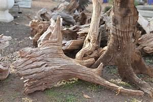 Garden Décor - Driftwood