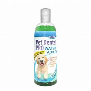 Love this pet dental care water additive for dogs cats for Dog dental water additive