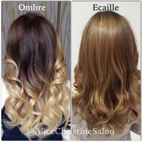 ecaille hair color 1000 ideas about ecaille hair color on