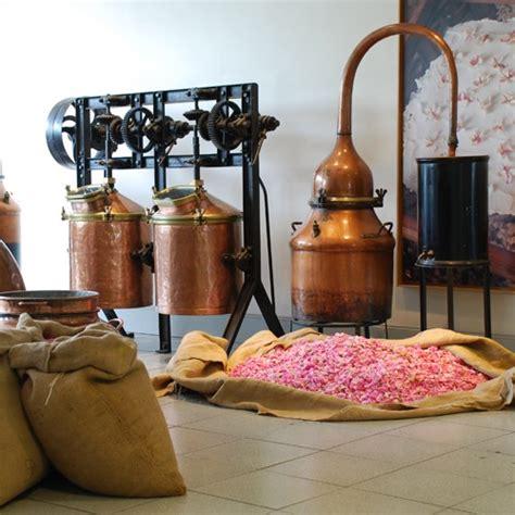 chambre d hote grasse grasse musée parfumerie fragonard