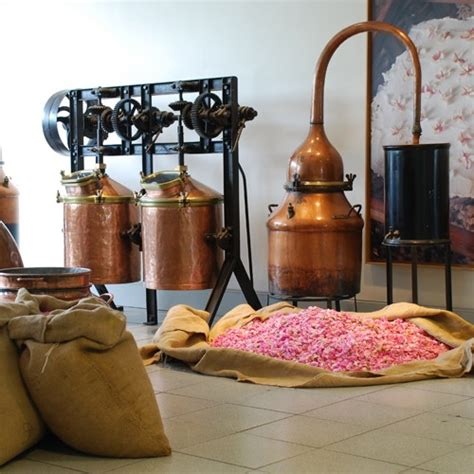 chambre d hotes grasse grasse musée parfumerie fragonard