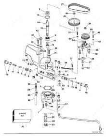 Johnson 1995 250