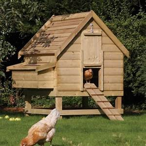 Large Chicken Coop Hen House Fsc Timber Easy Egg Collection