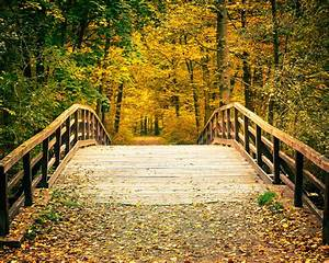 Image Gallery nature photography backgrounds
