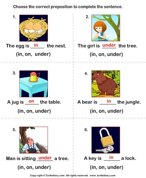Complete The Sentences Using Preposition In On And Under Worksheet  Turtle Diary