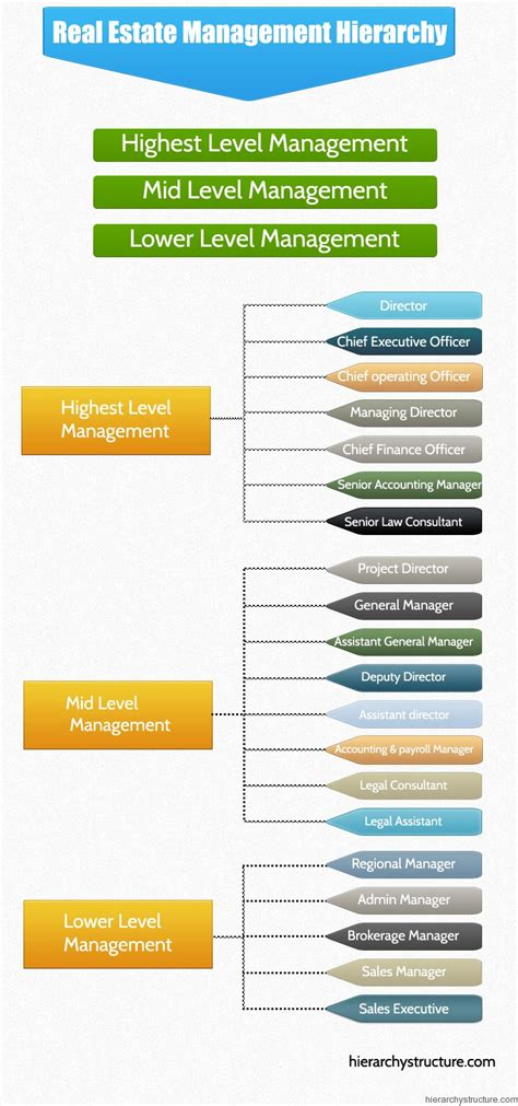 real estate management hierarchy hierarchystructurecom