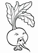 Remolachas Beet Frutas 10dibujos sketch template