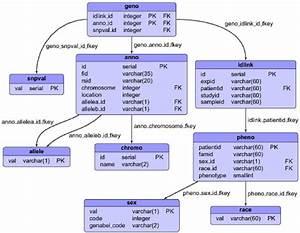 Database Schema  Geno Single Database Schema For The
