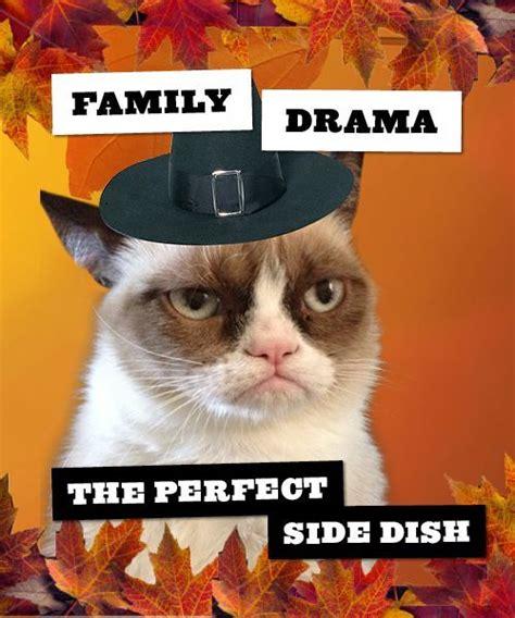 Thanksgiving Cat Meme - dear snarky i got thanksgiving dinner dumped in my lap snarky in the suburbs