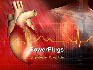 heart powerpoint backgrounds With cardiovascular powerpoint template free