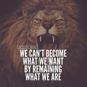 Pics For > Fierce Lion Wallpaper Quote