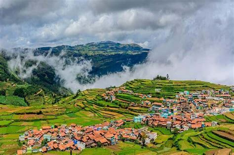 ooty  packages  nights  days  chennai yatrikatours