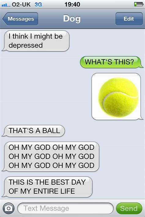 If Only Dogs Could Text25 of Their Favorite Messages to Us