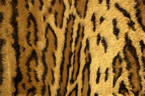 Animal Print Wallpaper - animal print wallpaper hd page 2 of 3 wallpaper wiki