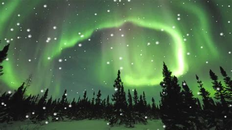 Lights Wallpaper Animated - borealis animated wallpaper http www