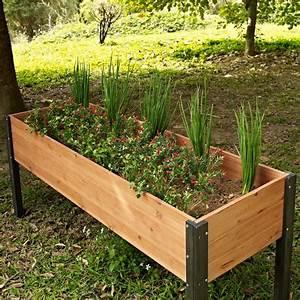 Hochbeet Holz Selber Bauen : hochbeet selber bauen und bepflanzen vorteile materialien und tipps ~ Buech-reservation.com Haus und Dekorationen