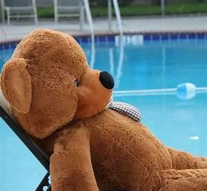 200 Cm Teddy : souq brown life size teddy bear 200 cm uae ~ Frokenaadalensverden.com Haus und Dekorationen