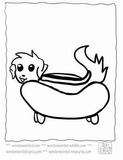 Coloring Pages Dog Sheets Funny Cartoon Weird