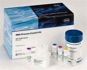Rna Process Control Kit