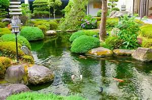 Was Müssen Sie Hier Beachten : das m ssen sie beim teich in ihrem garten beachten ~ Orissabook.com Haus und Dekorationen
