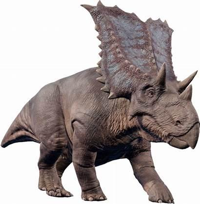 Evolution Chasmosaurus Fandom Dinosaur Jurassic Wiki Park