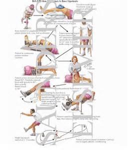 Knee Ligament Rehabilitation