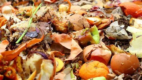 kitchen compost bin kitchen compost food spoilage footage stock