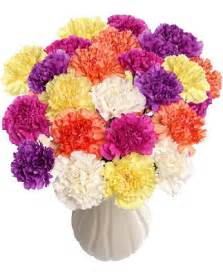 wholesale carnations 300 fresh cut carnations
