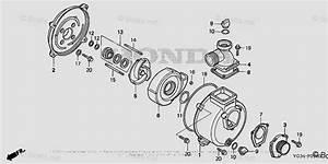 Honda Water Pump Parts Wb20xt2 A Vin  Wabt