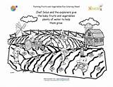 Coloring Crops Printable Farm Pages Grow Growing Vegetables Fruits Farming Sheet Plants Nutrition Water Fork Farmers Need Garden Printables Watering sketch template