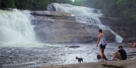 The Scoop on the 6 Best NC Waterfalls Nearby.