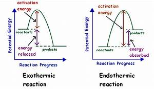 4 14 Represent Exothermic And Endothermic Reactions On A