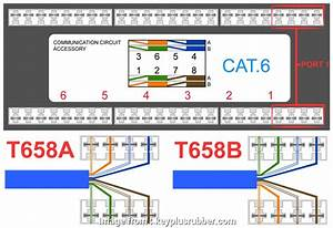 9 Most Rj45 Data Jack Wiring Diagram Photos