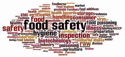 Safety Management Words System Procuro Pimm Sms