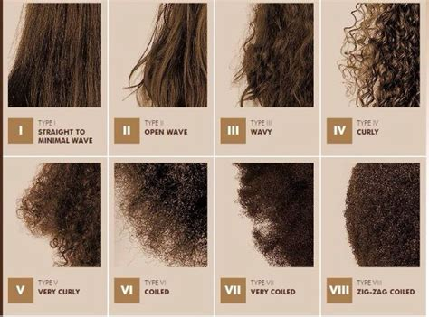 Types Of Brown Hair by Hair Type I Curly Hair But I Wish I
