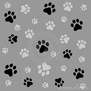 puppy paw print wallpaper - Bing images | Paw Prints ...