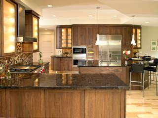 organization for kitchen cabinets shaker black walnut kitchen traditional kitchen 3772