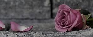 Trauer Blumen Bilder : trauer ~ Frokenaadalensverden.com Haus und Dekorationen